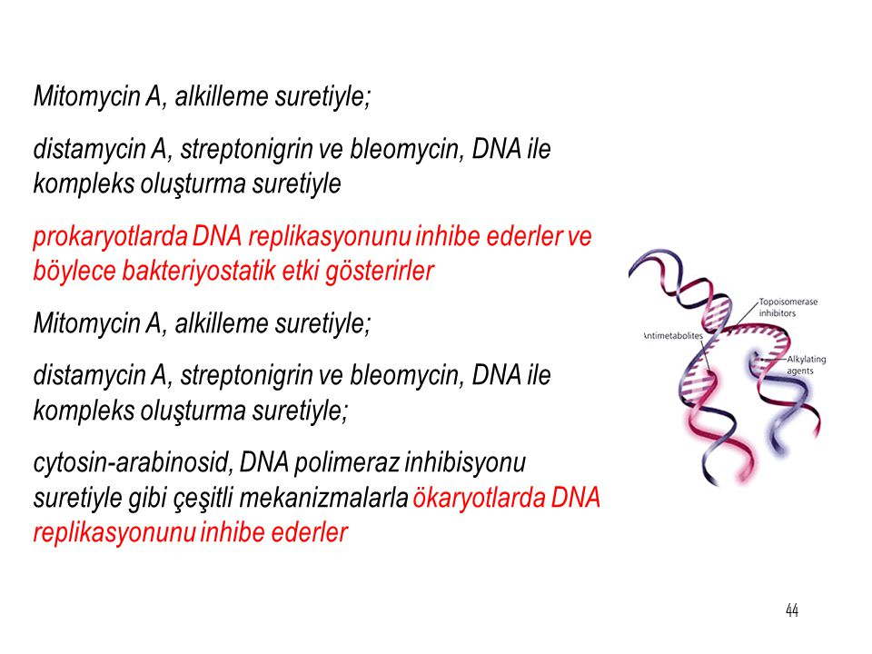 Mitomycin A, alkilleme suretiyle;