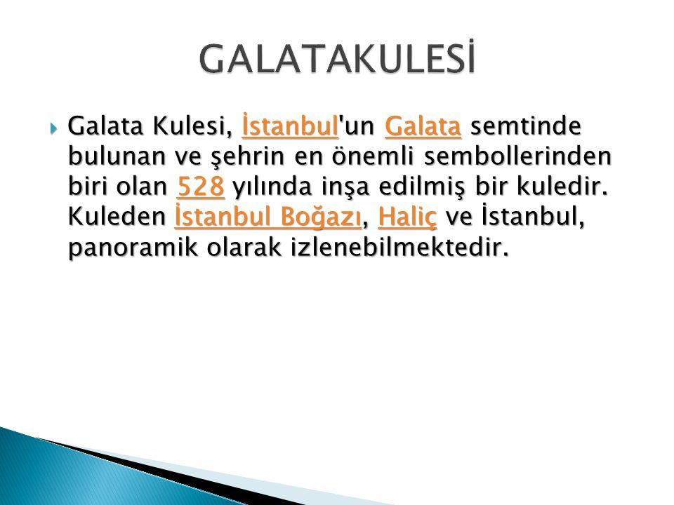 GALATAKULESİ
