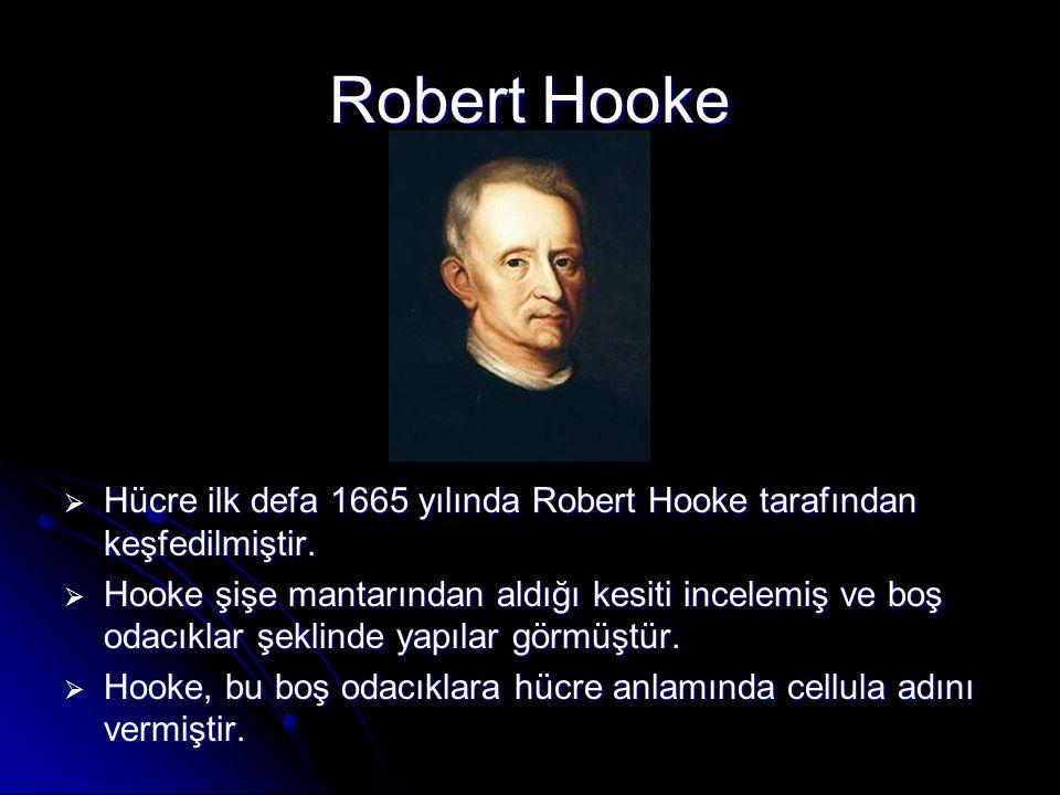 Robert Hooke Hücre ilk defa 1665 yılında Robert Hooke tarafından keşfedilmiştir.