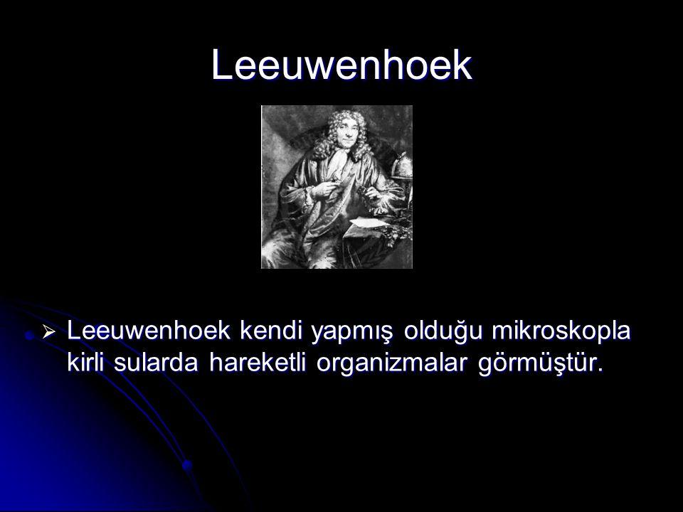 Leeuwenhoek Leeuwenhoek kendi yapmış olduğu mikroskopla kirli sularda hareketli organizmalar görmüştür.
