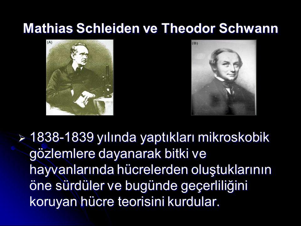 Mathias Schleiden ve Theodor Schwann