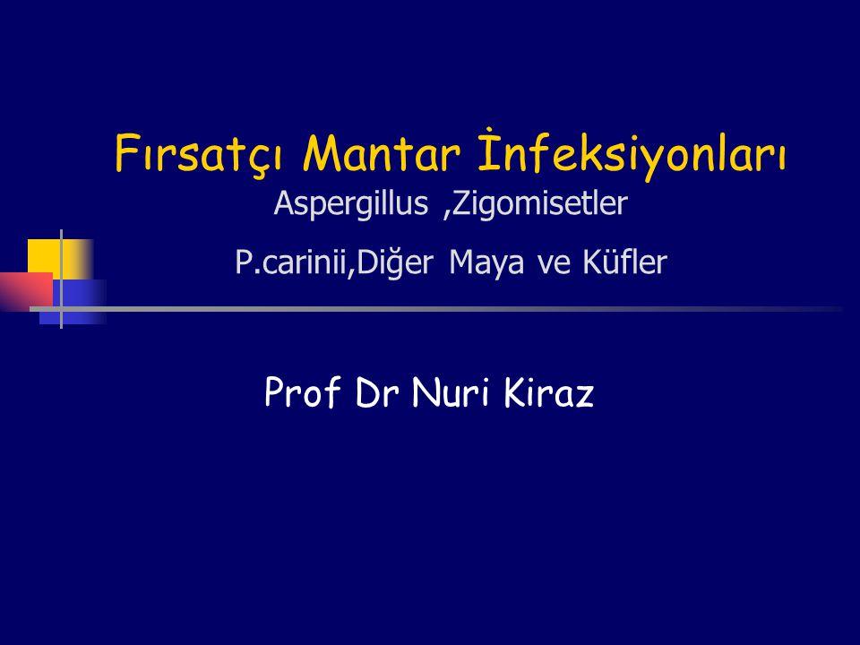 Fırsatçı Mantar İnfeksiyonları Aspergillus ,Zigomisetler P