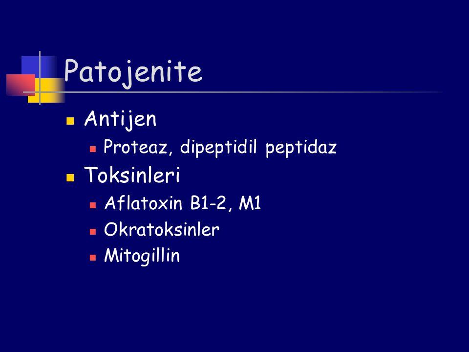 Patojenite Antijen Toksinleri Proteaz, dipeptidil peptidaz
