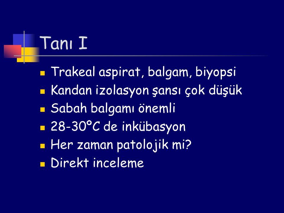 Tanı I Trakeal aspirat, balgam, biyopsi
