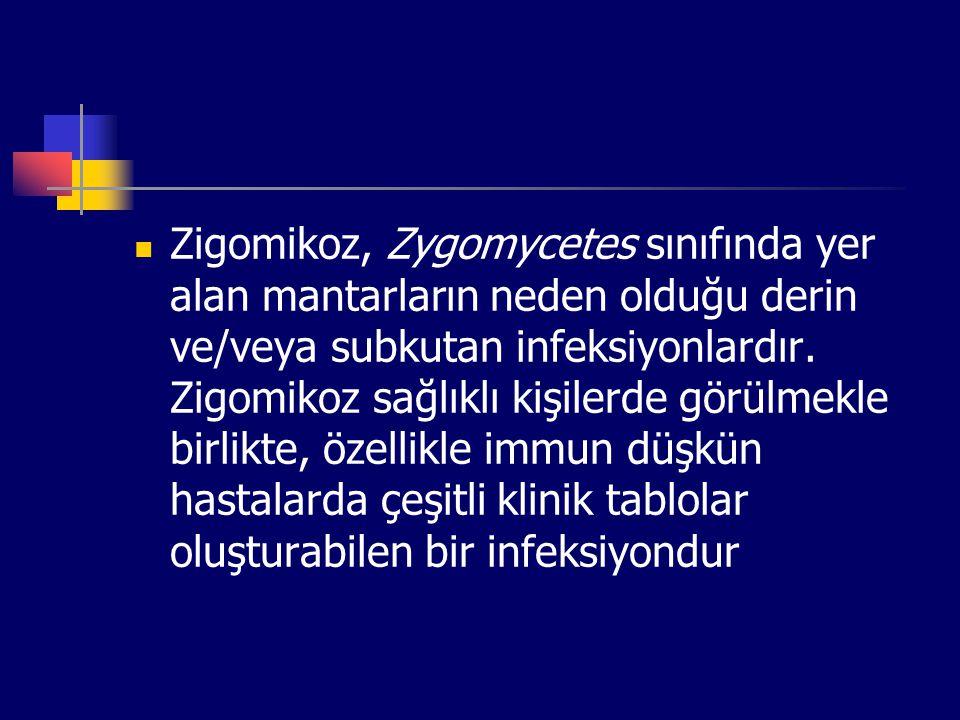 Zigomikoz, Zygomycetes sınıfında yer alan mantarların neden olduğu derin ve/veya subkutan infeksiyonlardır.