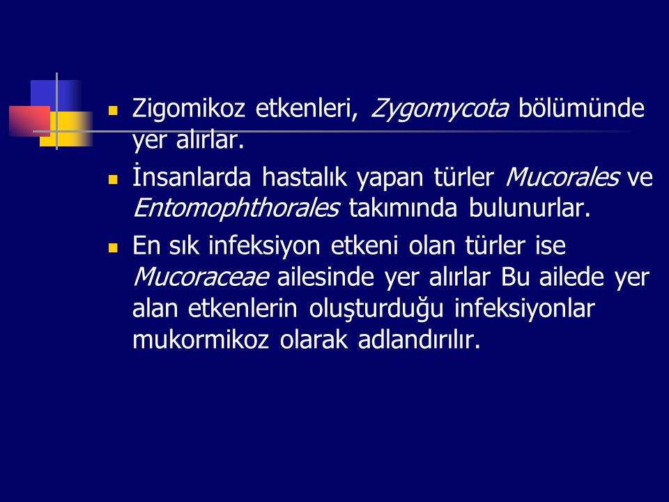 Zigomikoz etkenleri, Zygomycota bölümünde yer alırlar.