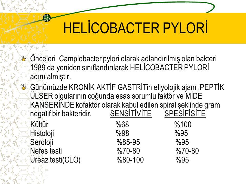 HELİCOBACTER PYLORİ