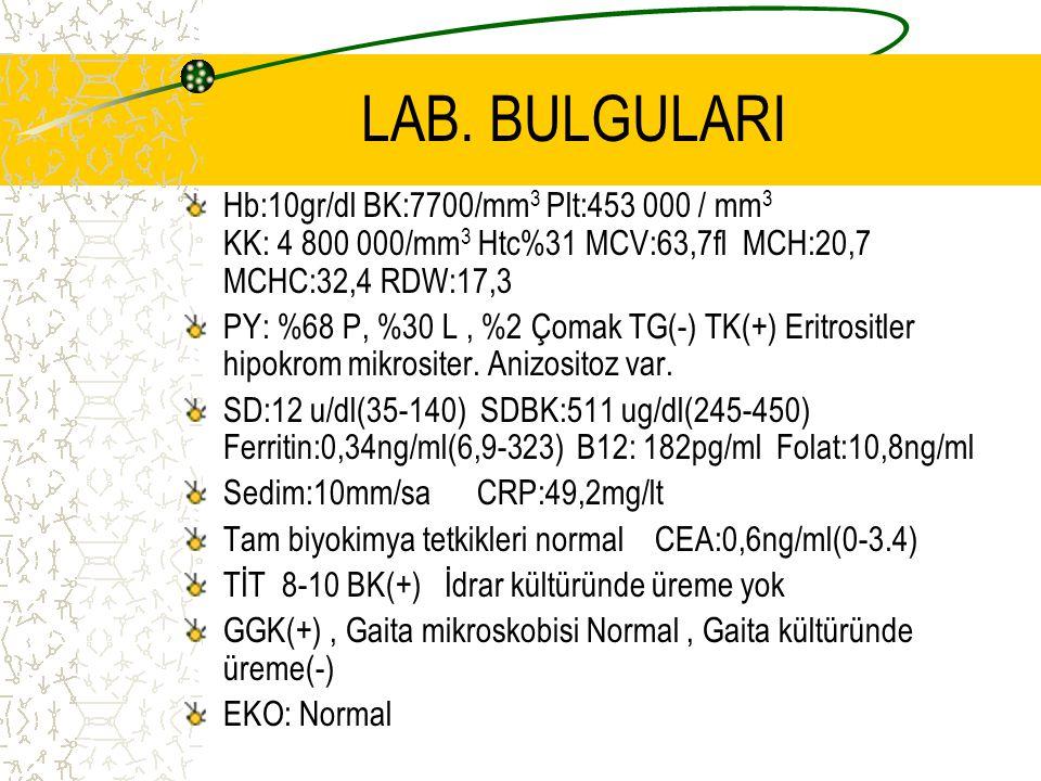 LAB. BULGULARI Hb:10gr/dl BK:7700/mm3 Plt:453 000 / mm3 KK: 4 800 000/mm3 Htc%31 MCV:63,7fl MCH:20,7 MCHC:32,4 RDW:17,3.