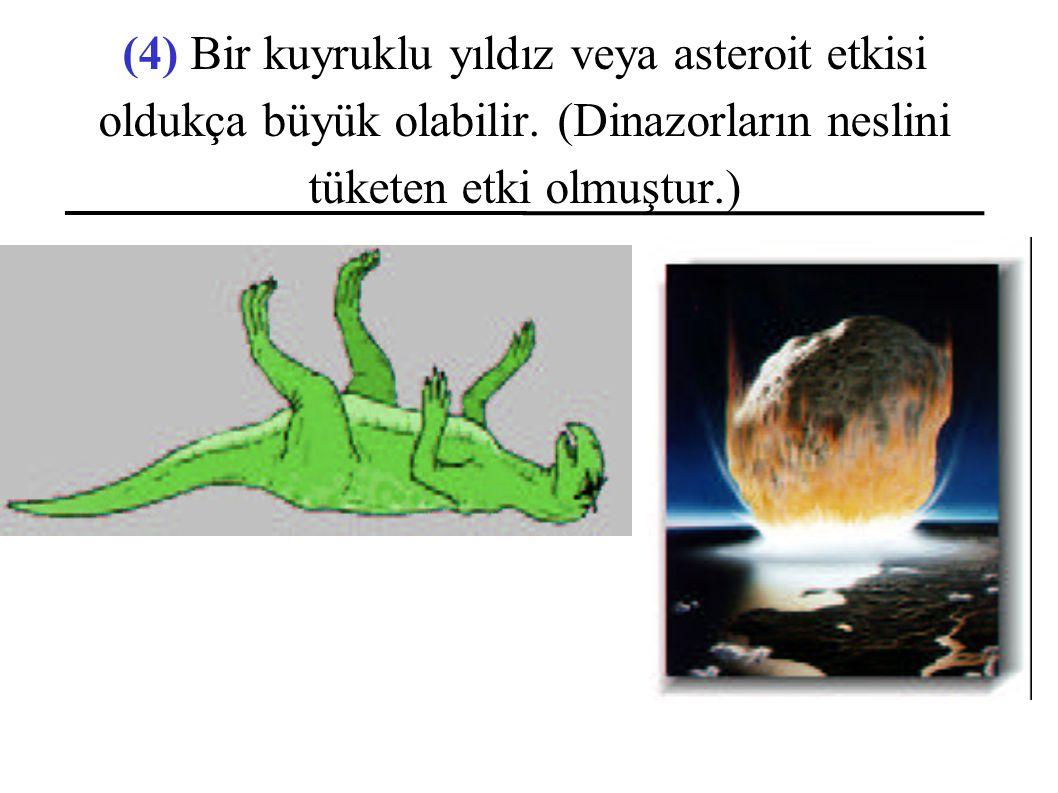 (4) Bir kuyruklu yıldız veya asteroit etkisi oldukça büyük olabilir