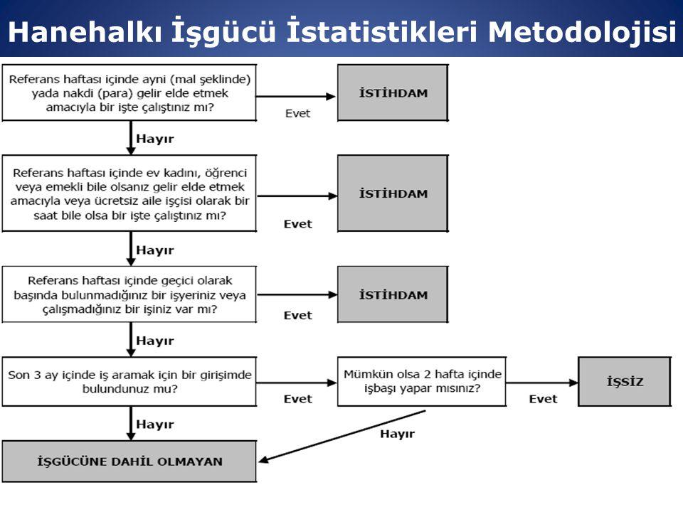 Hanehalkı İşgücü İstatistikleri Metodolojisi