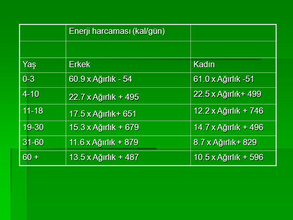 Enerji harcaması (kal/gün)