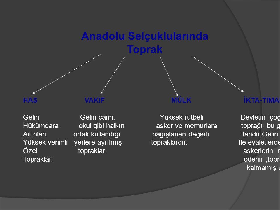Anadolu Selçuklularında Toprak