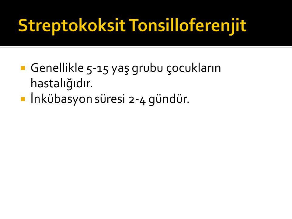 Streptokoksit Tonsilloferenjit