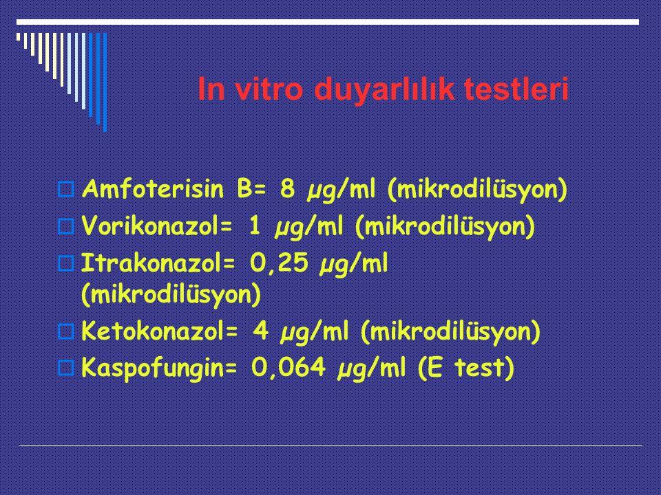 In vitro duyarlılık testleri