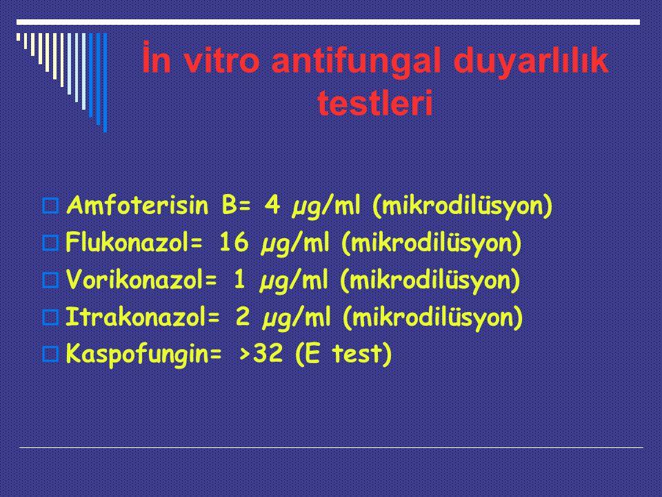 İn vitro antifungal duyarlılık testleri