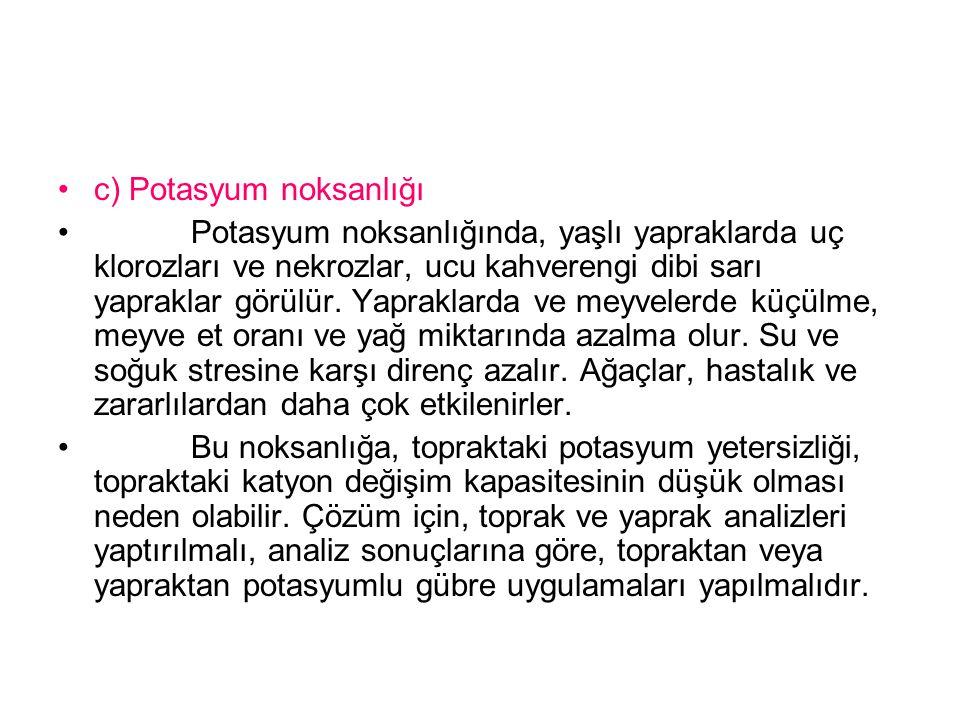 c) Potasyum noksanlığı