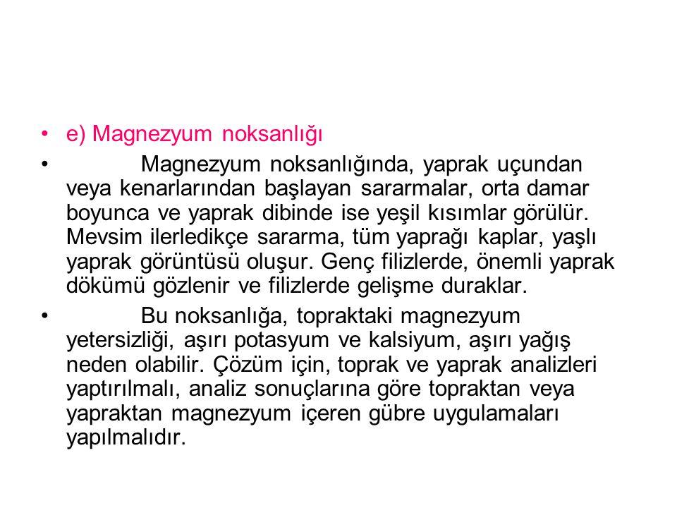 e) Magnezyum noksanlığı
