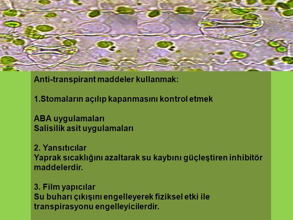 Anti-transpirant maddeler kullanmak: