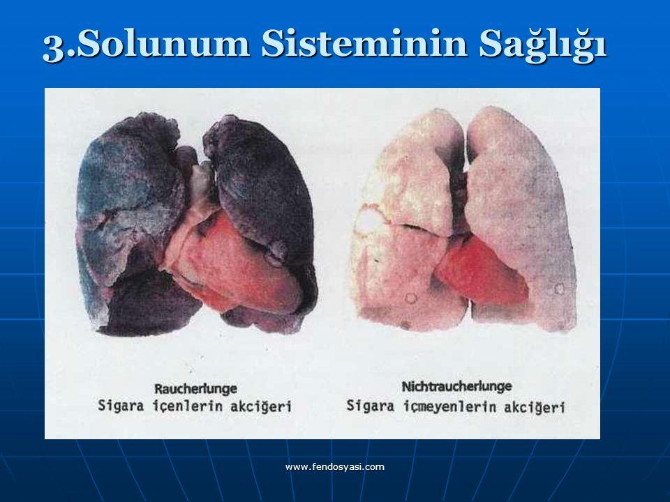 3.Solunum Sisteminin Sağlığı