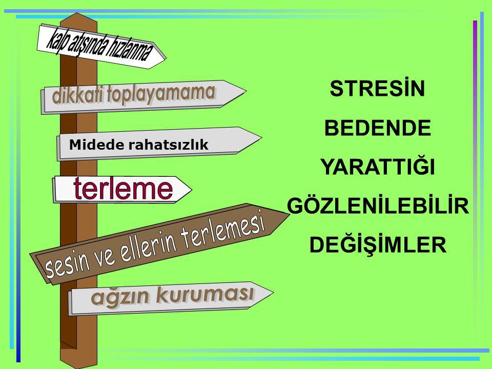 STRESİN BEDENDE YARATTIĞI GÖZLENİLEBİLİR