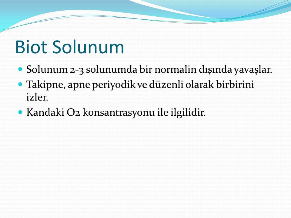 Biot Solunum Solunum 2-3 solunumda bir normalin dışında yavaşlar.