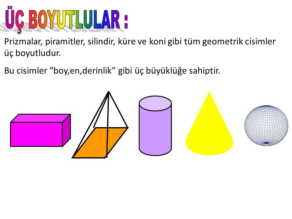 ÜÇ BOYUTLULAR : Prizmalar, piramitler, silindir, küre ve koni gibi tüm geometrik cisimler üç boyutludur.