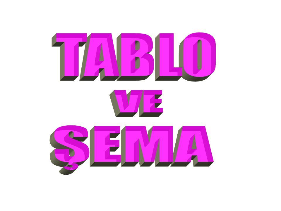 TABLO VE ŞEMA