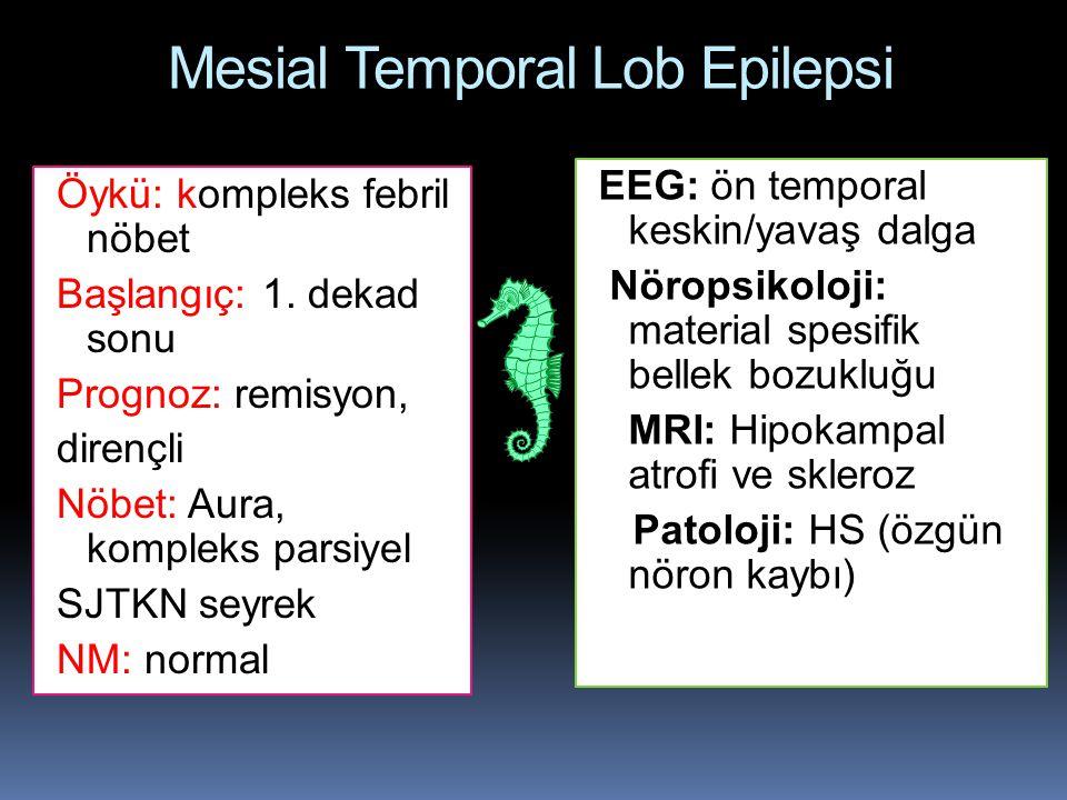Mesial Temporal Lob Epilepsi
