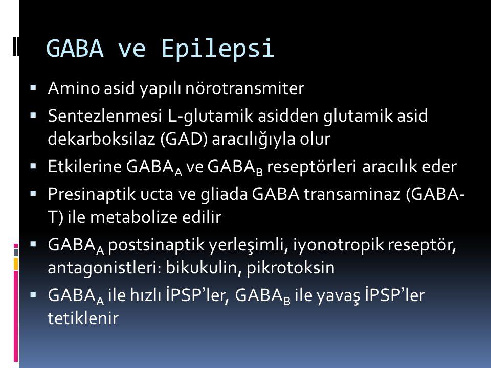 GABA ve Epilepsi Amino asid yapılı nörotransmiter