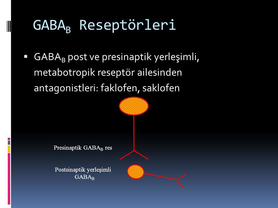 GABAB Reseptörleri GABAB post ve presinaptik yerleşimli,
