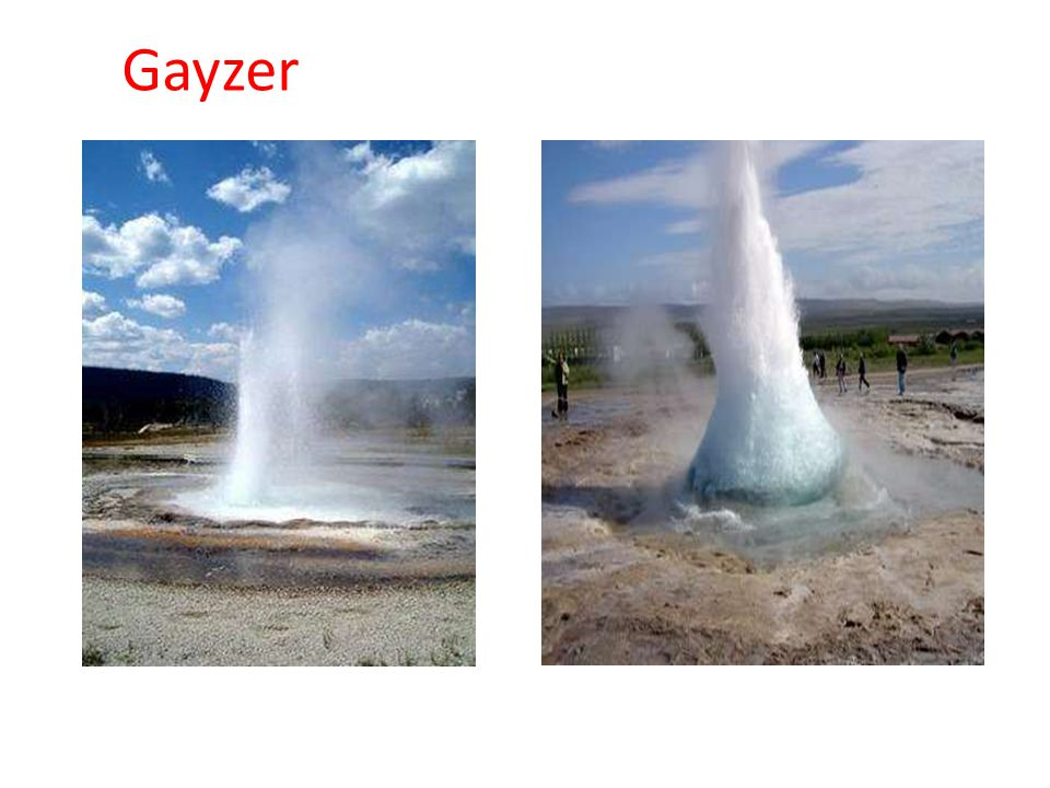 Gayzer