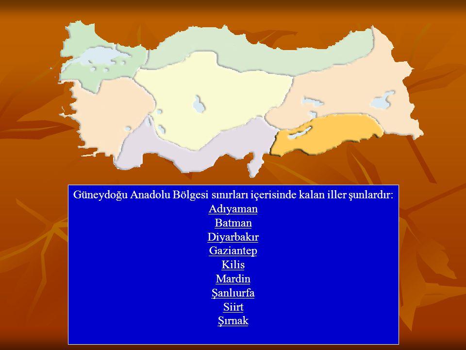 Güneydoğu Anadolu Bölgesi sınırları içerisinde kalan iller şunlardır: