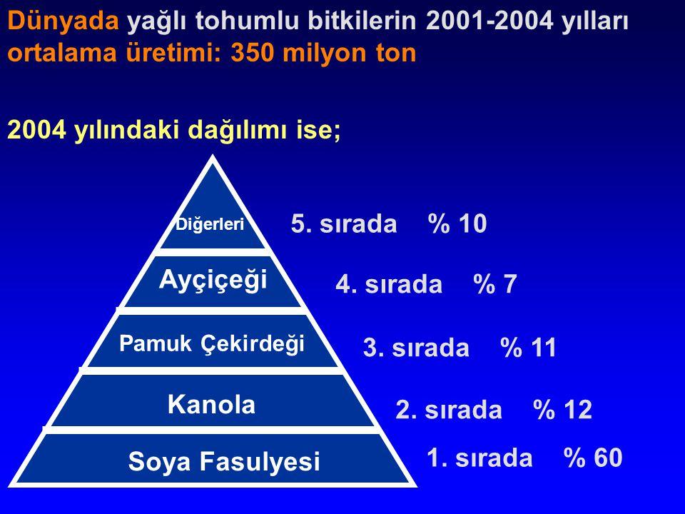 2004 yılındaki dağılımı ise;