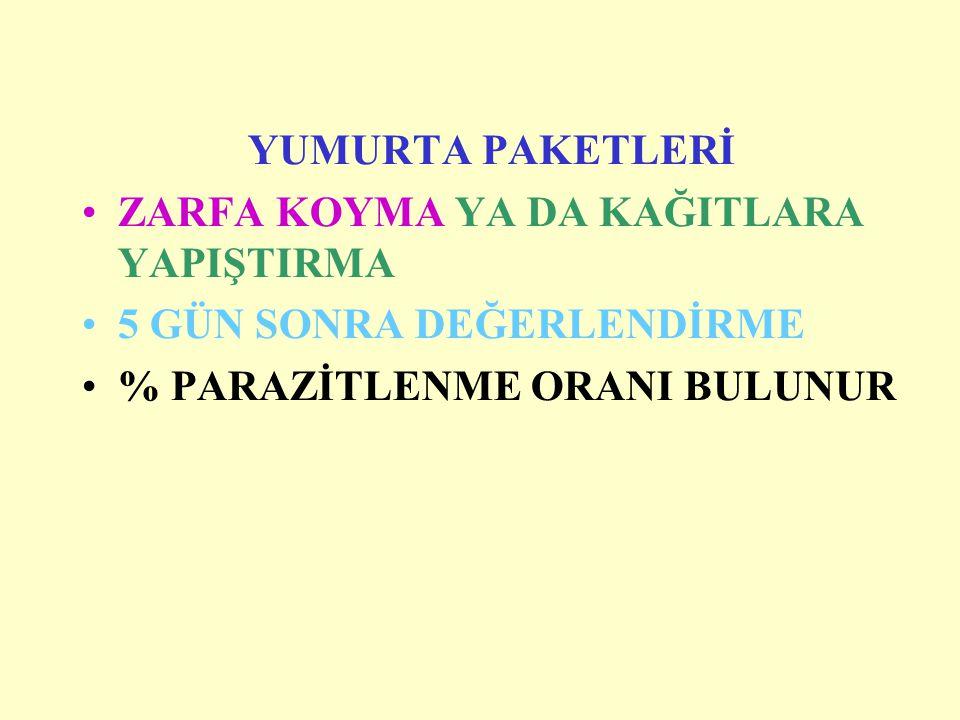 YUMURTA PAKETLERİ ZARFA KOYMA YA DA KAĞITLARA YAPIŞTIRMA.