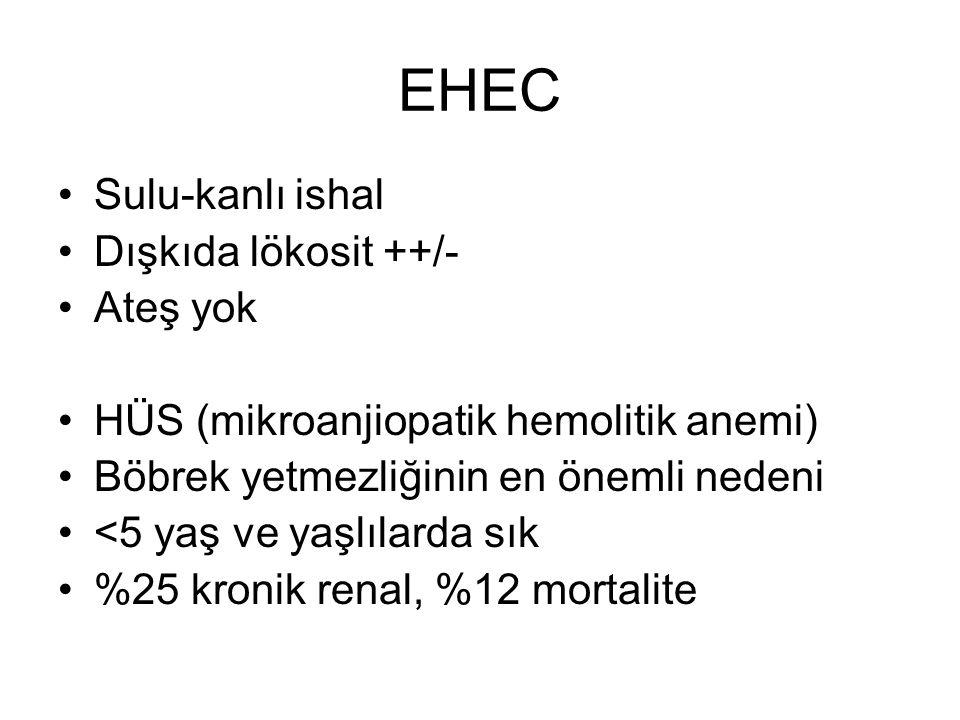 EHEC Sulu-kanlı ishal Dışkıda lökosit ++/- Ateş yok