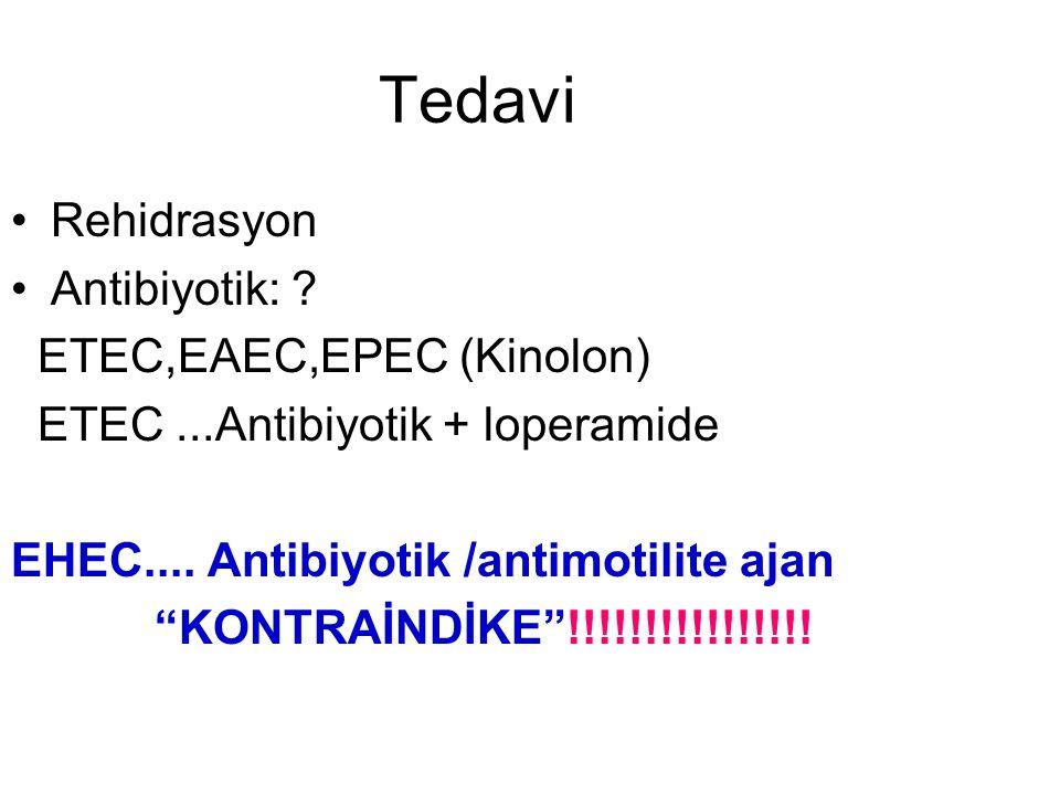 Tedavi Rehidrasyon Antibiyotik: ETEC,EAEC,EPEC (Kinolon)