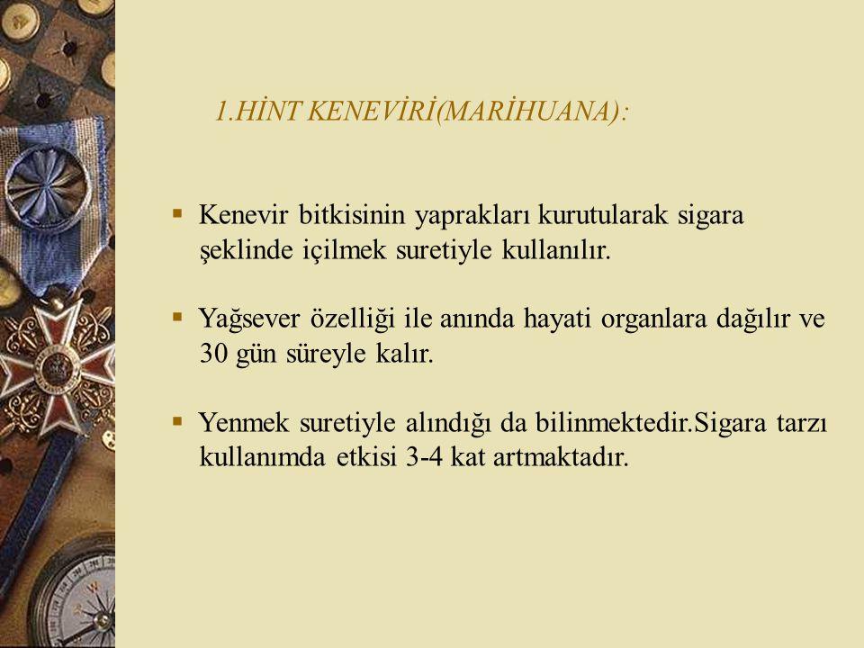 1.HİNT KENEVİRİ(MARİHUANA):