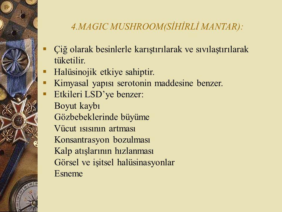 4.MAGIC MUSHROOM(SİHİRLİ MANTAR):