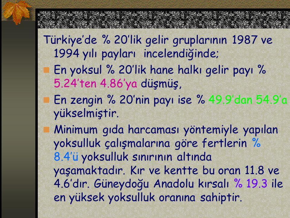 Türkiye'de % 20'lik gelir gruplarının 1987 ve 1994 yılı payları incelendiğinde;