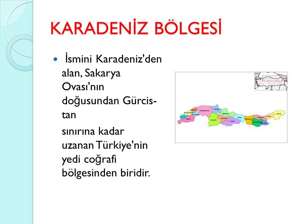 KARADENİZ BÖLGESİ İsmini Karadeniz den alan, Sakarya Ovası nın doğusundan Gürcis- tan.