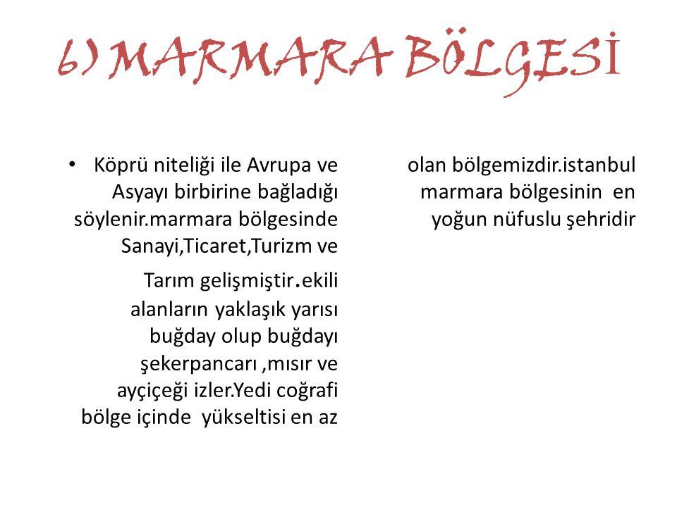 6)MARMARA BÖLGESİ