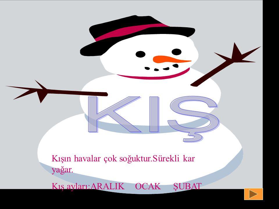 KIŞ Kışın havalar çok soğuktur.Sürekli kar yağar.
