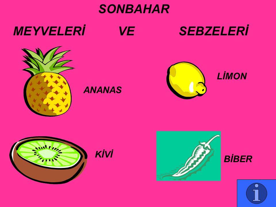 MEYVELERİ VE SEBZELERİ