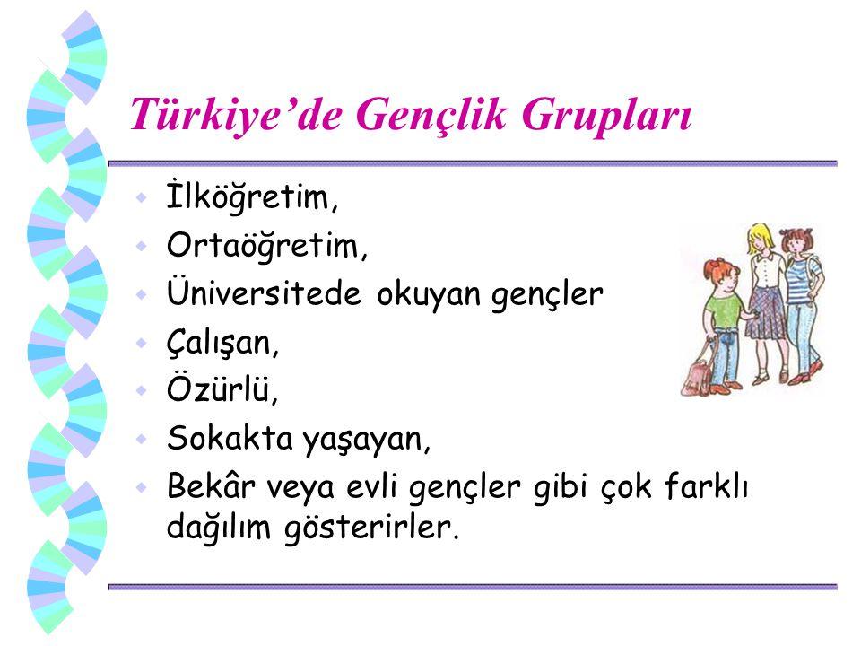 Türkiye'de Gençlik Grupları