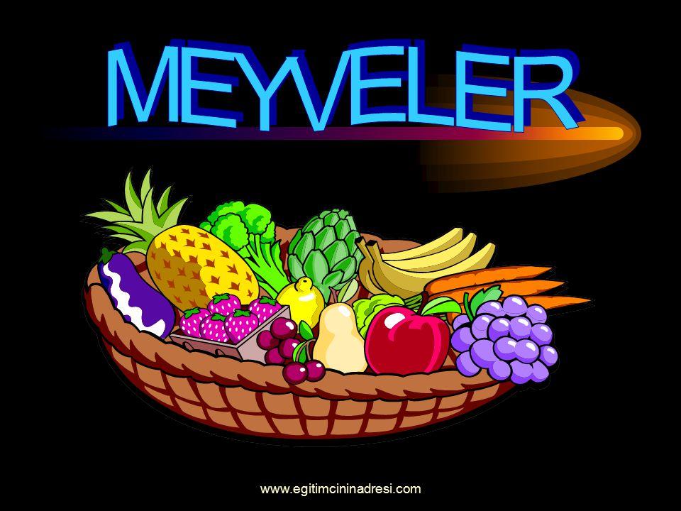 MEYVELER www.egitimcininadresi.com