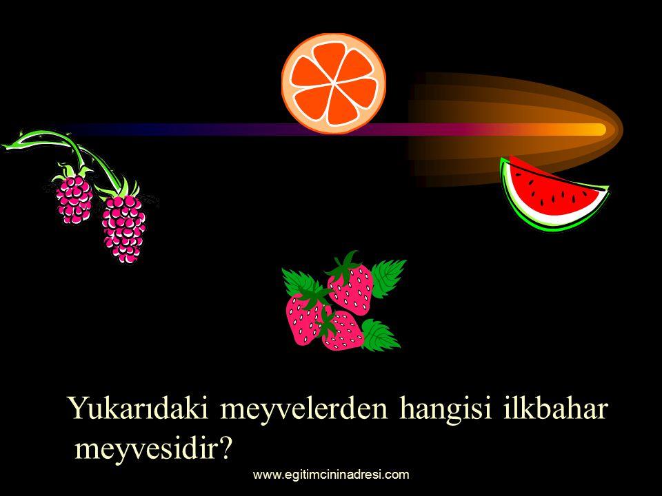 Yukarıdaki meyvelerden hangisi ilkbahar meyvesidir