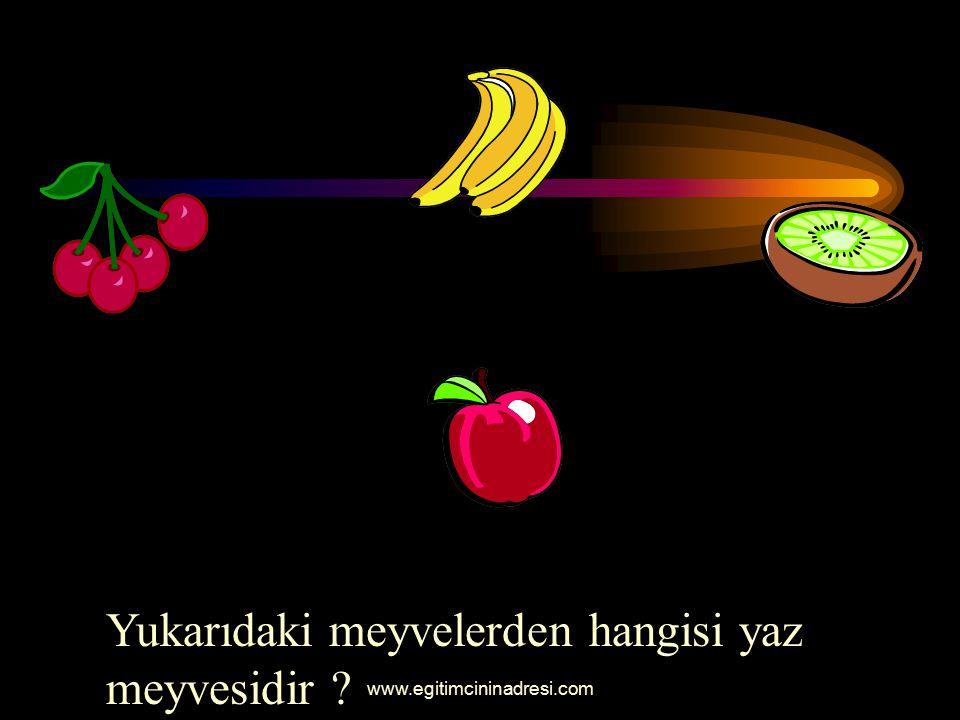 Yukarıdaki meyvelerden hangisi yaz meyvesidir