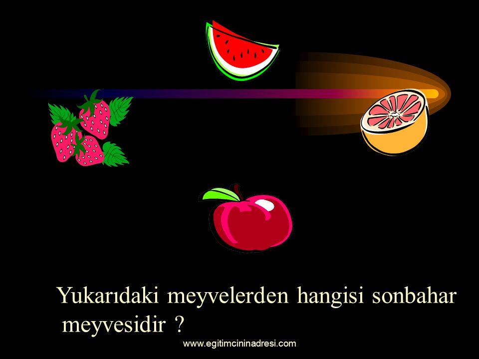 Yukarıdaki meyvelerden hangisi sonbahar meyvesidir
