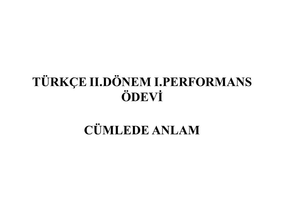 TÜRKÇE II.DÖNEM I.PERFORMANS ÖDEVİ