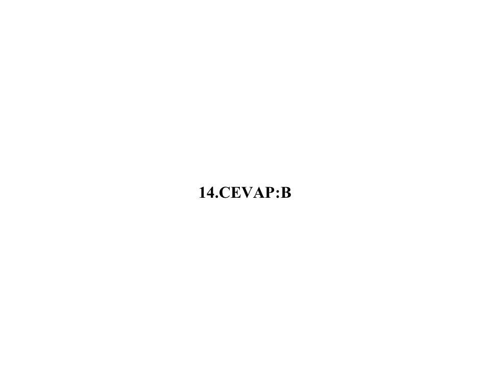 14.CEVAP:B